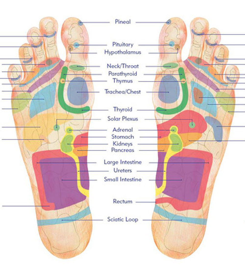 A Guide to Reflexology